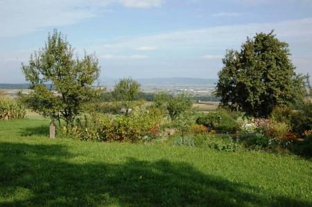 Bauerngarten am Weg vom Wiesenzauner auf den Kuhberg