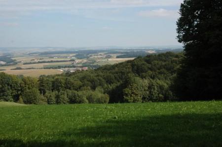 Blick vom Kuhberg auf den Dunkelsteinerwald