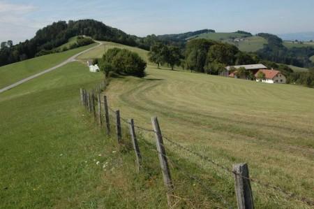Blick zurück zum Meiselberg und Plambacheck