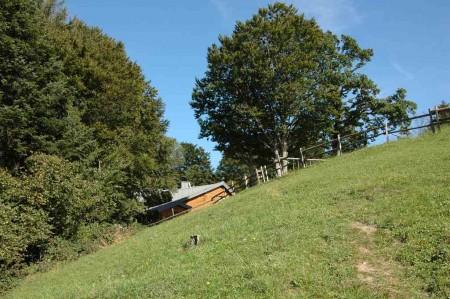 Die Stockerhütte lugt über die Wiesenkante