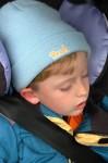 Bernie im Auto, er schlief bereits in der Bim und am Verteilerkreis ein.