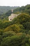 Blick vom Wildgatter zur Ruine Johannstein