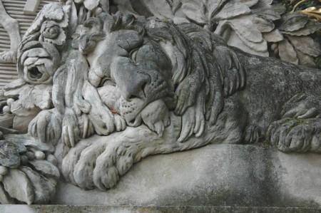 Ein schlafender Löwe am Weg