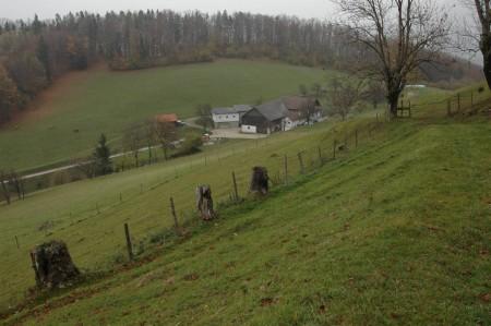 Ober-Ramsau, auf der gegenüber liegenden Seite im Wald dürfte die Route 1 verlaufen