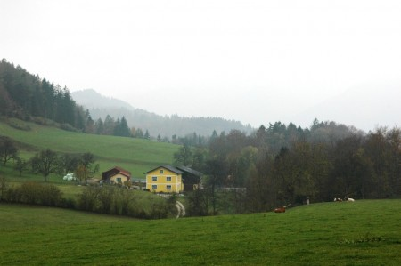 Blick vom Thalhof Richtung Schrofen