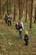 Zu einer Schwammerlgruppe in den Wald abgebogen