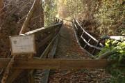 Der Alte Weg in die Ruine - Betreten Verboten