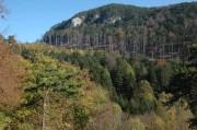 Ausblick von der Ruine Schrattenstein in den Talkessel