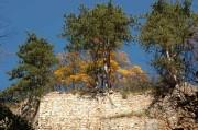 Blick hinauf zu einer alten Burgmauer