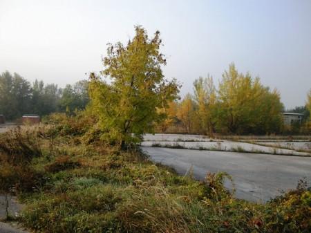 Leopoldsdorf: Lagerplatz neben Merkur