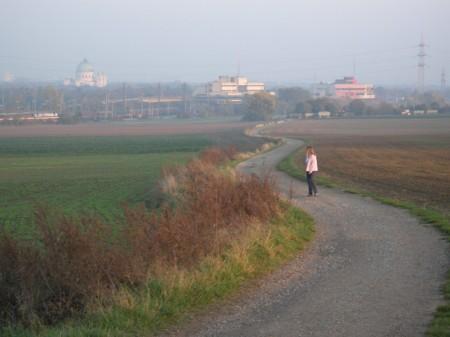 Schleife Richtung Zentralfriedhof