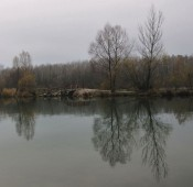 Der Weg führte zuerst über diese Brücke und ans Greifenstein gegenüber liegende Ufer des Altarms