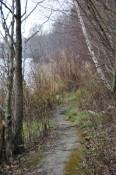 Viele kleine Wege führen von der Schotterstraße zum Ufer und an manchen Stellen auch an diesem entlang.