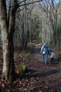 Im laublosen Wald gab´s sehr viel Sonne