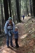 Der Aufstieg verlief fast ausschließlich im Wald