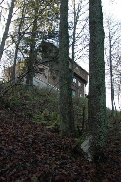 Letzter Blick hinauf zur Hütte (sie wirkt hier etwas trutzig und ist die letzten 10 Minuten des Aufstiegs bereits durch die Bäume zu sehen)