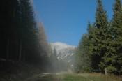 Der letzte Hauch von Nebel