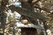 Das Schild zur Habsburgerhütte ist etwas eingewachsen