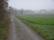Blick zurück Richtung Lanzendorf