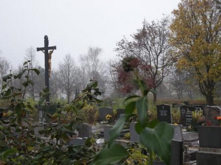 Blick in den Oberlaaer Friedhof (da war ich echt in Eile und schlecht drauf !)