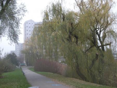 Durch den Park oberhalb des Hansson-Zentrums