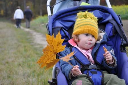 Nov: tut gut-Wanderung Bad Pirawarth
