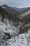 Blick das Tal hinaus Richtung Lilienfeld