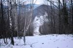 Schneise hinunter zur Glatzwiese