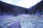 lilienfeld_1155_20081225