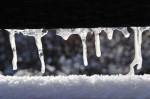 lindkogel_1553_20081230
