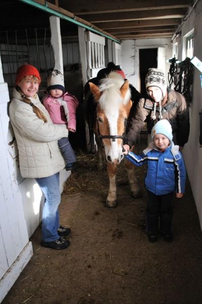 pferdereiten_495_20081221