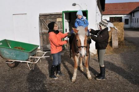 pferdereiten_497_20081221