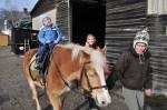 pferdereiten_504_20081221