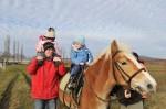 pferdereiten_508_20081221