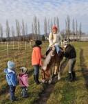 pferdereiten_510_20081221