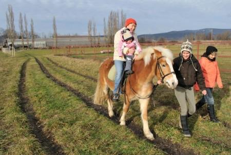 pferdereiten_511_20081221