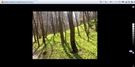 Und hier ein Frühlings-Foto in der Anninger-Diashow