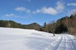 fotos_297_20081214