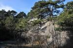 Gleich nach dem Gasthof Bockerl gab´s rechts vom Weg diese schönen Felsen