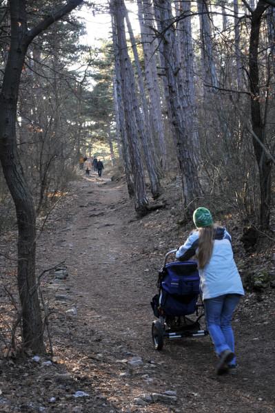 """Der Weg war anfangs mit dem Kinderwagen zum Teil eine rechte Wurzen- und Steinplackerei. Hier eine der """"harmloseren"""" Passagen"""