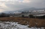Der Anninger auf der anderen Seite der Bahn