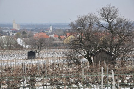 Blick auf Guntramsdorf