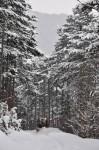 Hier holt uns der Schneepflug ein