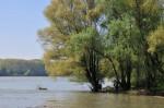 Recht hoher Wasserstand der Donau