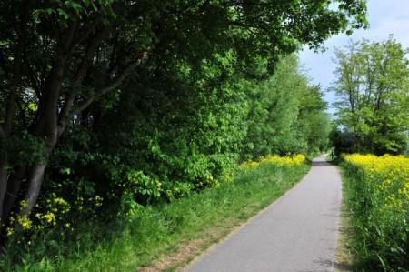Triestingau-Radweg zwischen Trumau und Oberwaltersdorf
