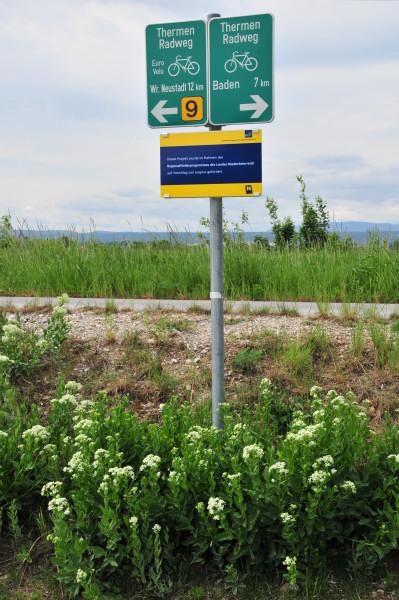 Weggabelung am Wr. Neustädter Kanal bei Schönau