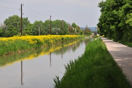 Am Wiener Neustädter Kanal