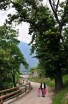Bei Brixen blühten gerade die Maronibäume