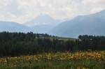 Die wirklich großen Berge sahen wir nur von Ferne