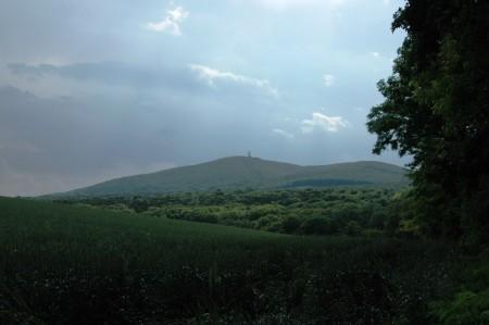 Blick vom Eichkogel zum Anninger, vorsichtige Annäherung im Juni 2008